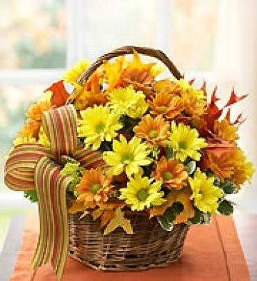 Fall Basket of Daisies